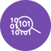 Icon with the binary code and magnifying glass images.