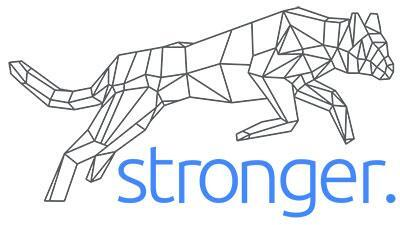 Stronger International Inc. logo